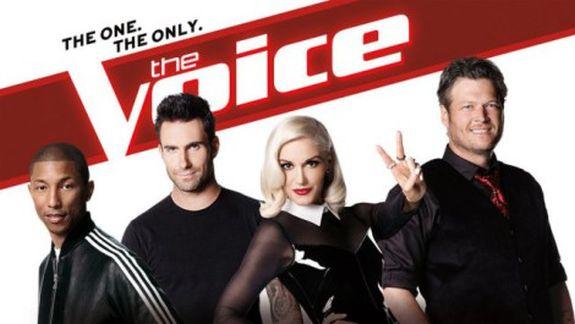 The Voice Coaches