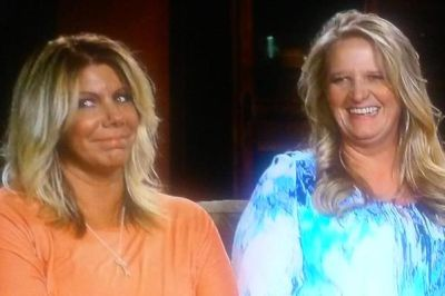 This accurately describes Meri's and Christine's reactions to the adoption...