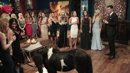 It's sad that this has basically become the typical Night One scene on 'The Bachelor.'